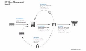 指南:11个步骤建立人才管理流程